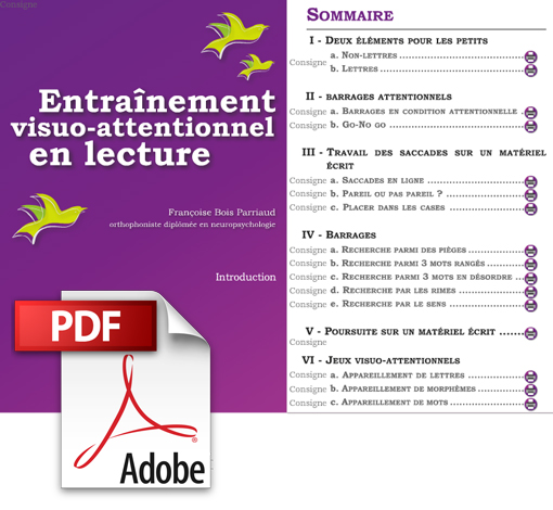 Entraînement visuo-attentionnel en lecture (pdf)